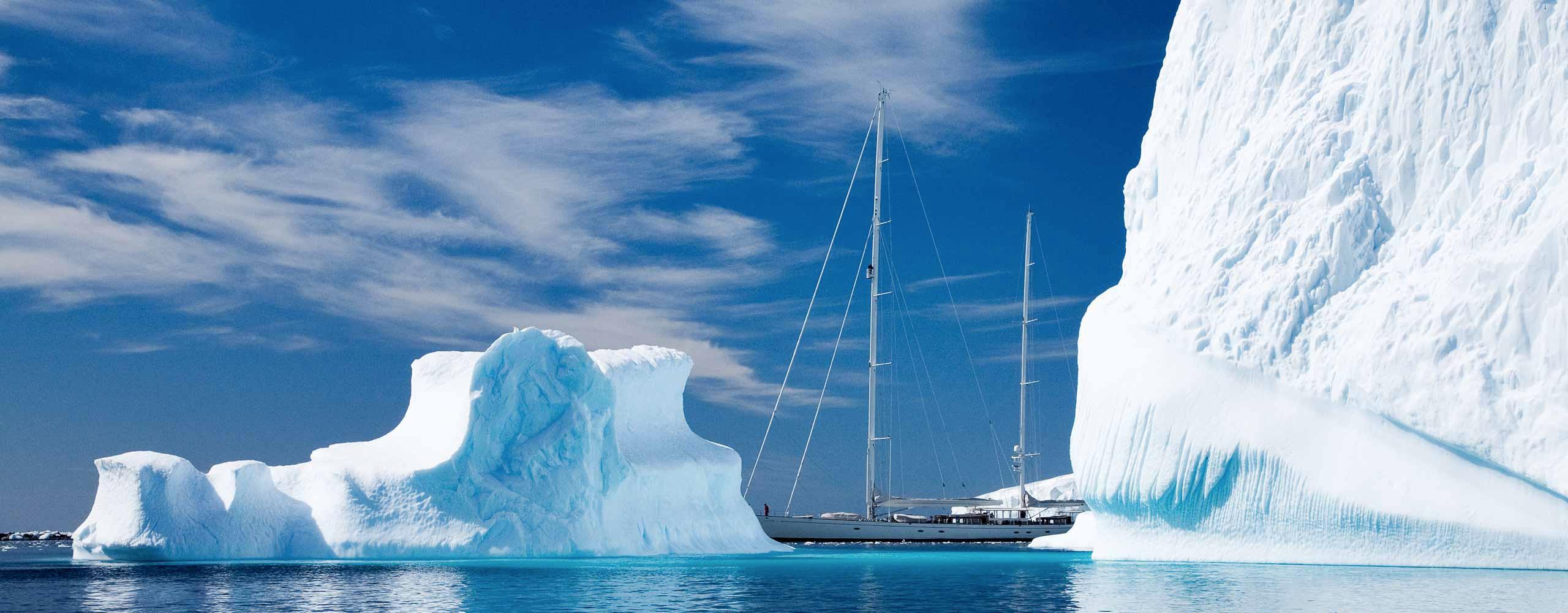 Adèle among icebergs
