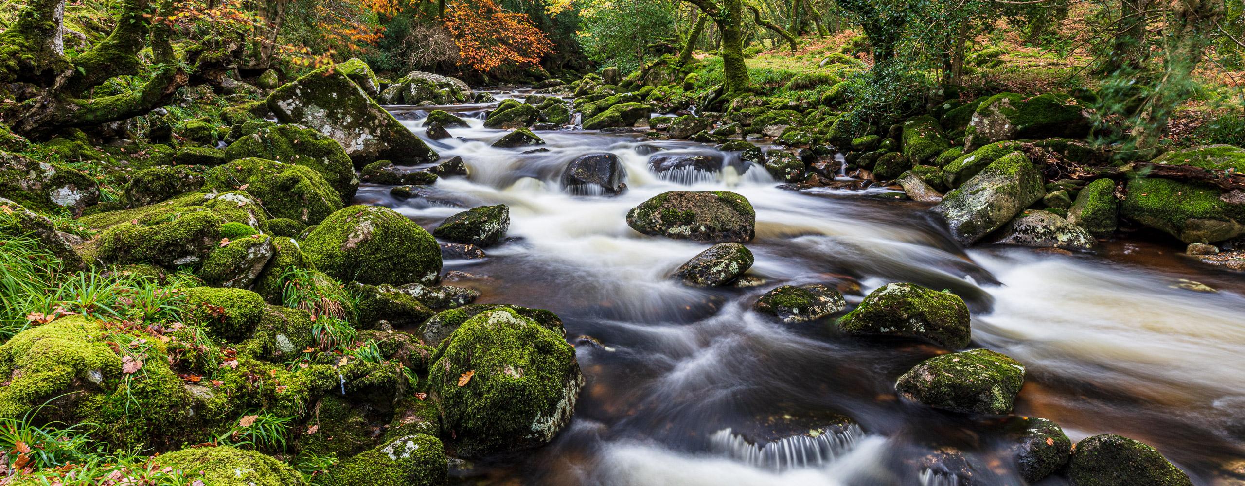 River Plym, Dartmoor, England