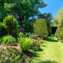 We continue our walk and turn right around the yew hedges into the rose garden