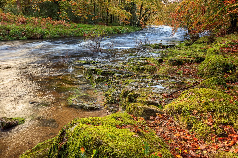 River Dart near Holne Chase later in the autumn (beginning November).