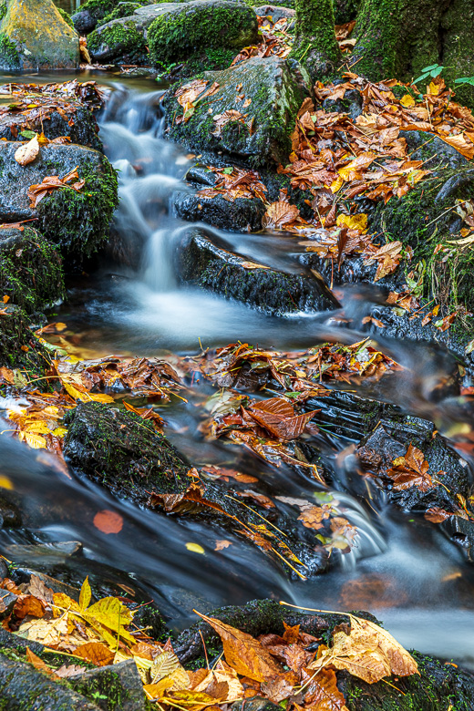 A detail of the river Teign. 8 seconds exposure