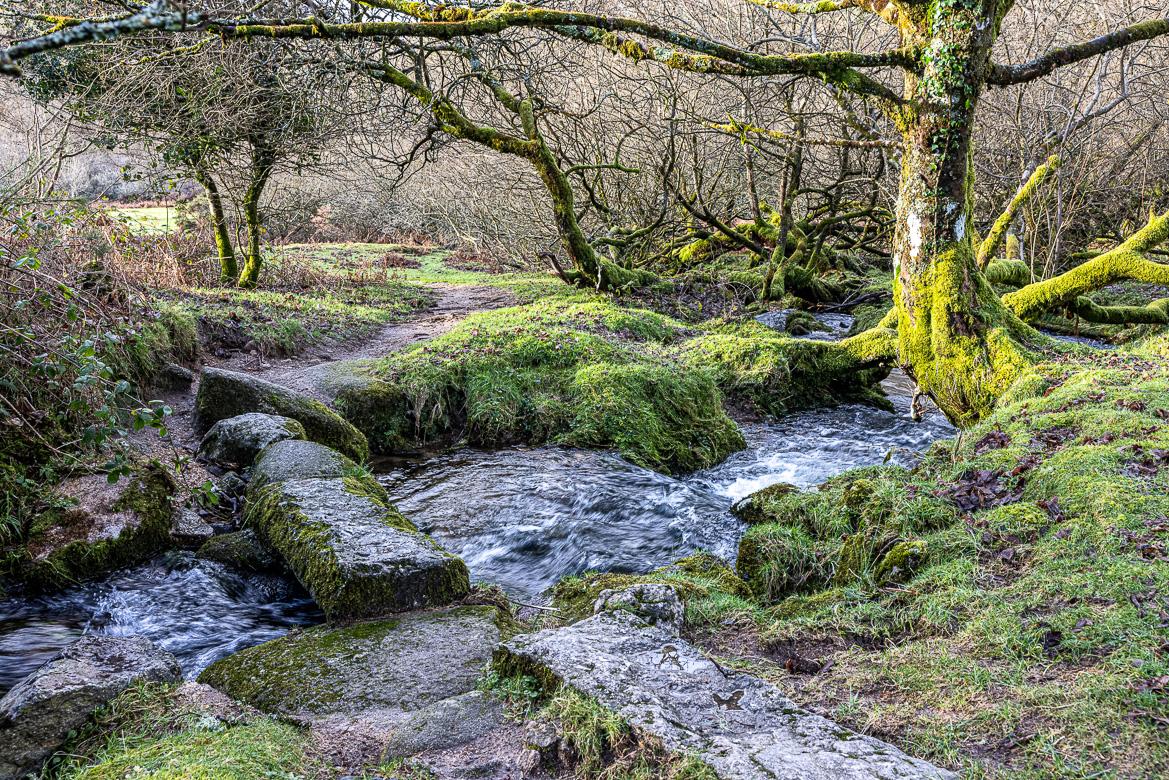 002-201224-Devon-070-JE